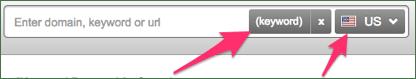 SEMrush search-input