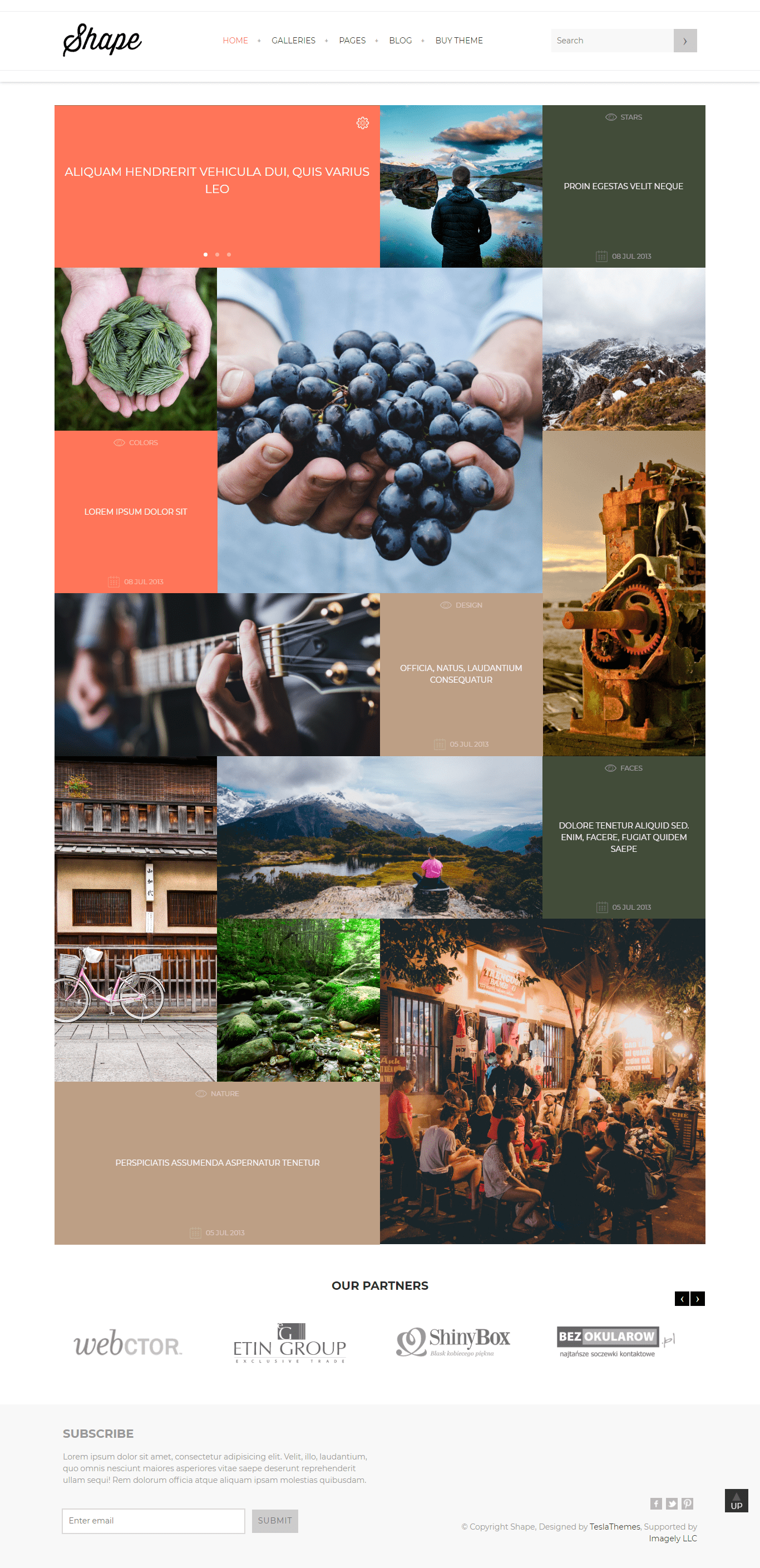 Shape - Perfect WordPress Theme For Photography