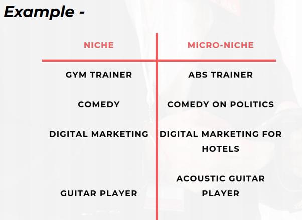 micro-niche1