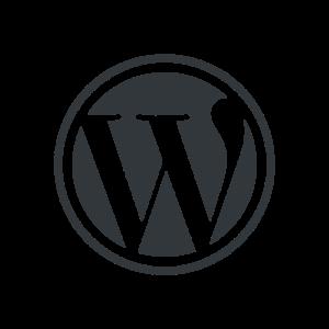 WordPress CMS is the best website builder for custom design look